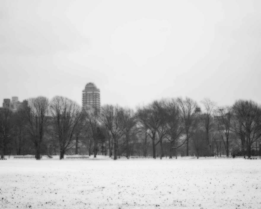 1.10.2015-Central-Park-Winter-2